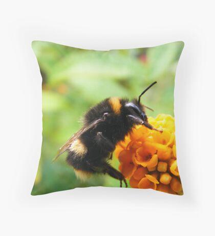Buddliah Bee Throw Pillow