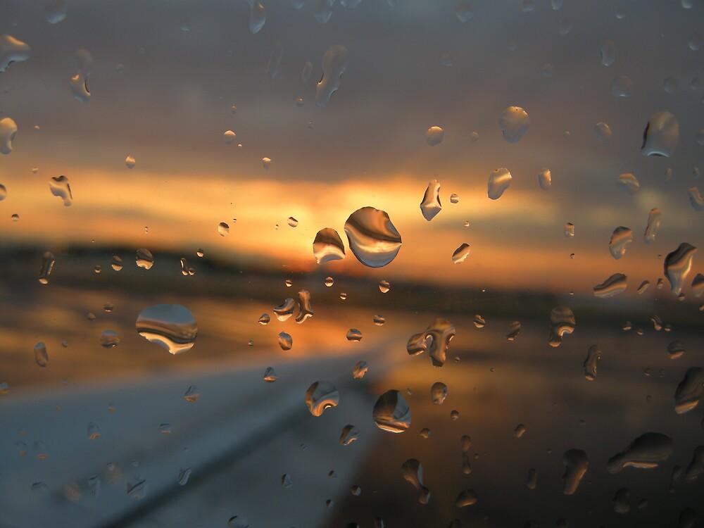 Waterwings by HandofTamm