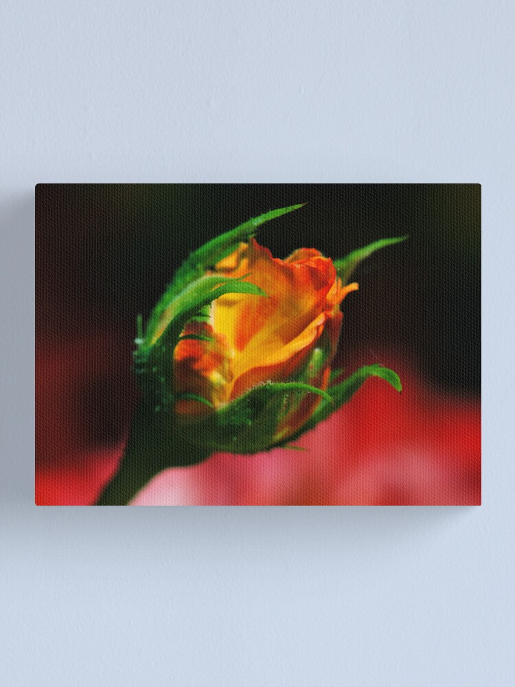 Alternate view of Bud Rising Canvas Print