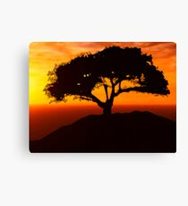African Savanna Canvas Print