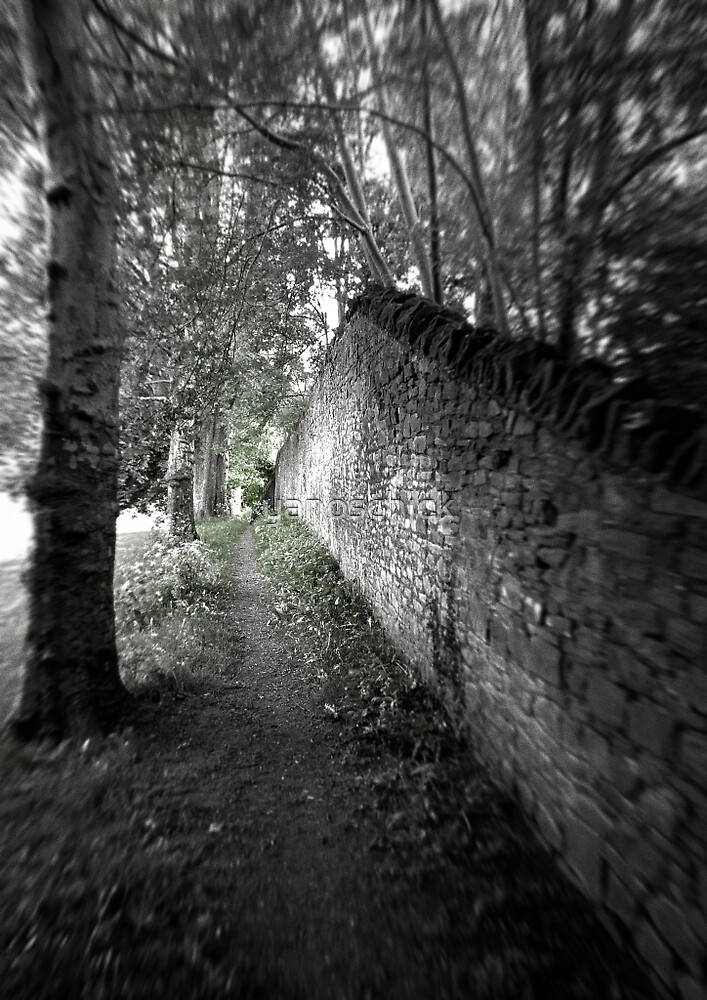 Along the wall. Along the border. by yanoschick
