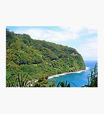 Road to Hana Study 11  Photographic Print