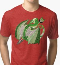 Aromantic Pride Dragon Tri-blend T-Shirt