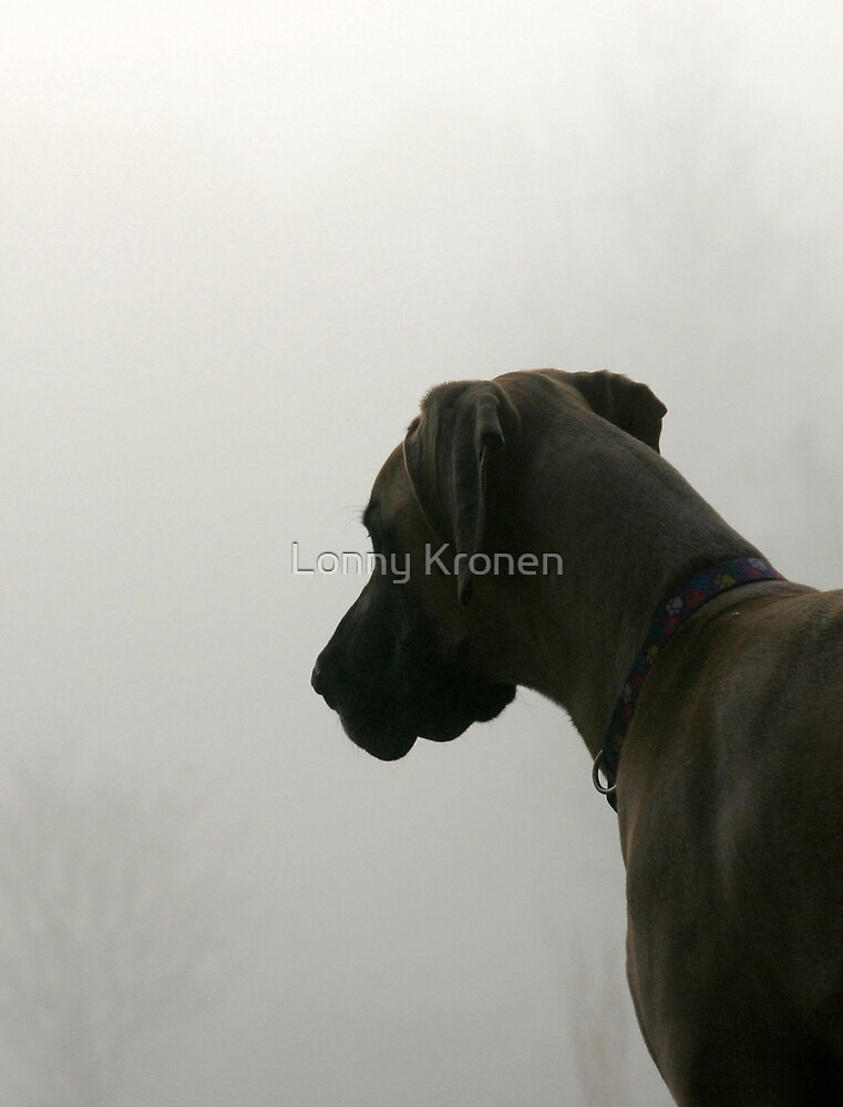 Foggy Morning by Lonny Kronen