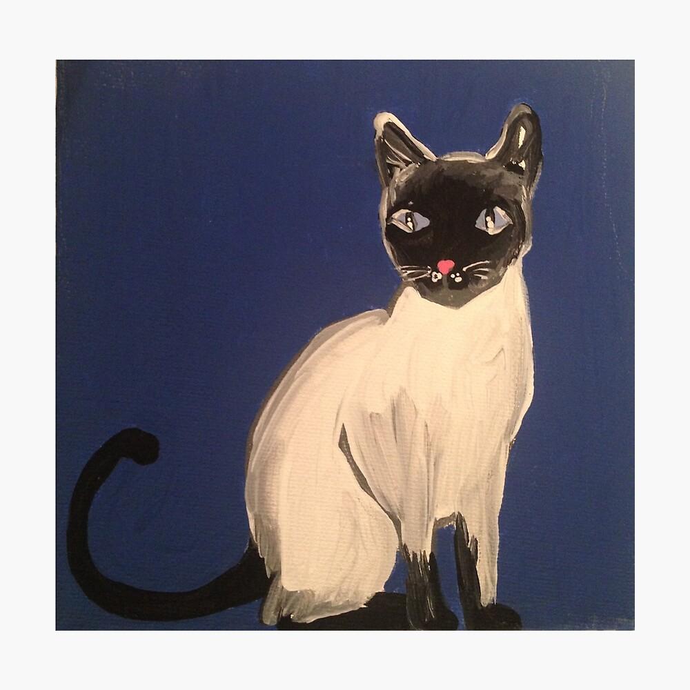 Gato siames Lámina fotográfica