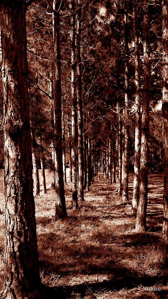Row of Trees by Nukee