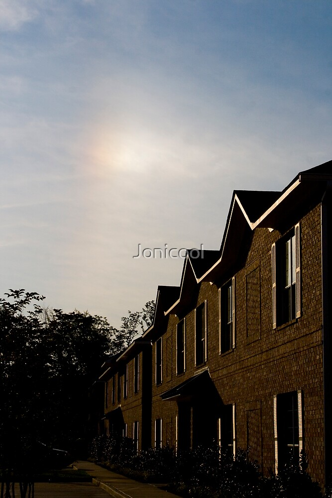 Sun Dog by Jonicool