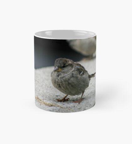 Little Finch Mug