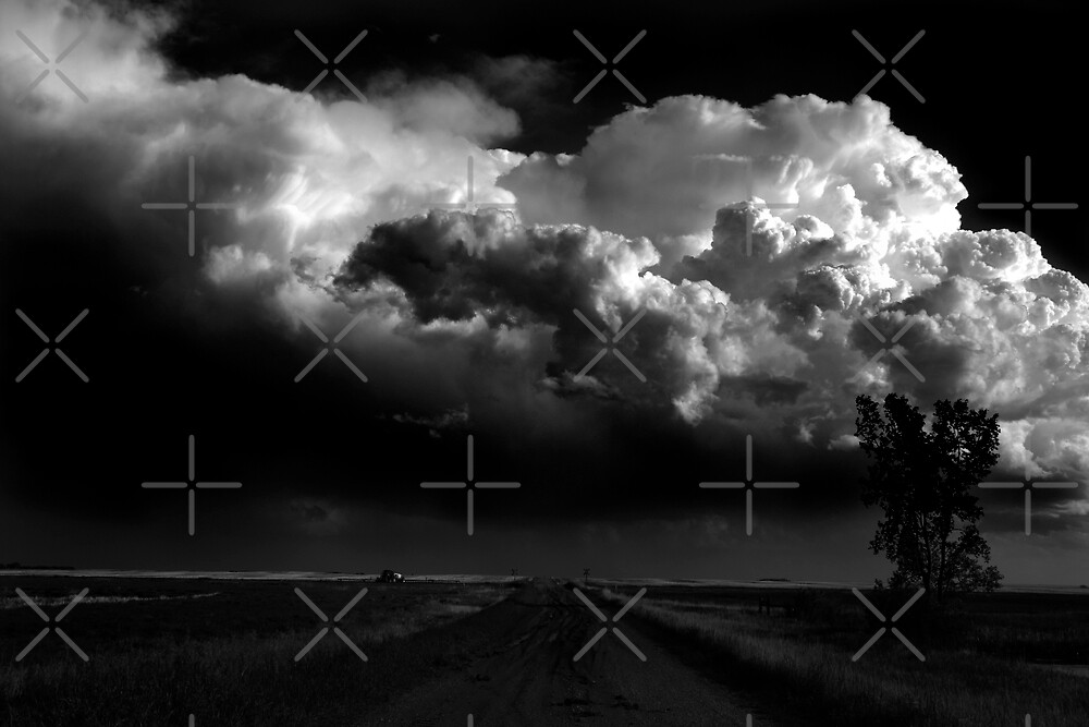 Storm Cell by Angela E.L. Clements
