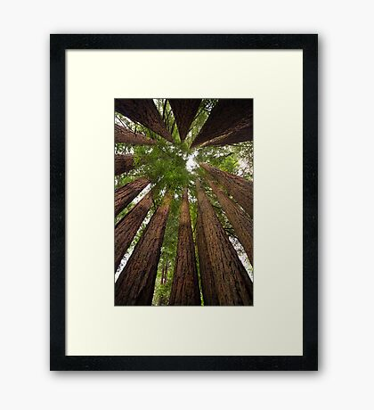 Pow Wow of the Giants Framed Print