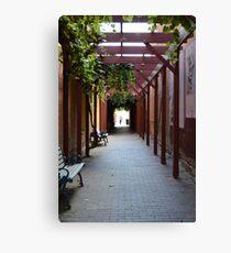 A pedestrian thoroughfare - Benalla Canvas Print