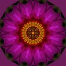 Pink Twirl by Bev Woodman