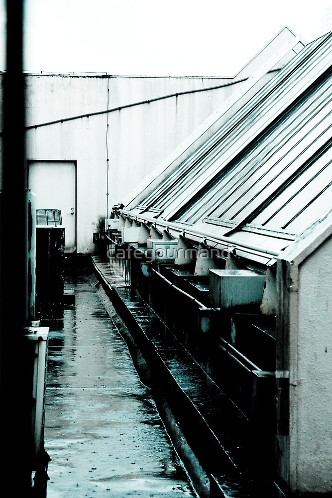 Rain Wet Rooftop by cafegourmand