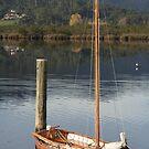 Huon Sailing Boat by Basa