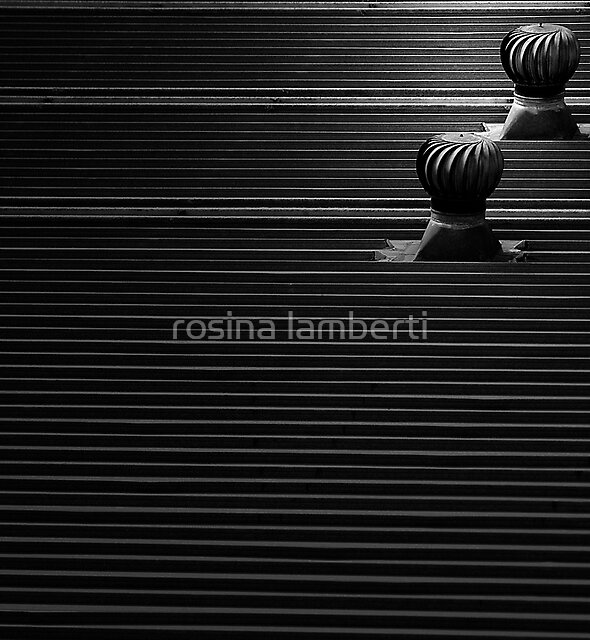 Vents by Rosina  Lamberti