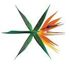 Exo The War by baekgie29