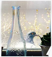 The Brooklyn Pigeon Poster
