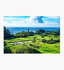 Road to Hana Study 18  Photographic Print