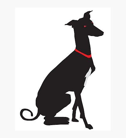 greyhound (vector) Photographic Print