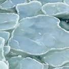 Pancake Ice up close by DaleJacobsen