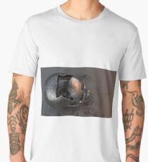 Skull_Old Brass Cracked Men's Premium T-Shirt