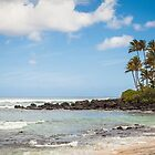North Shore Tranquility by Joshua McDonough Photography