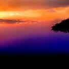 Sunset Over Masai Mara, Kenya III by Didi Bingham