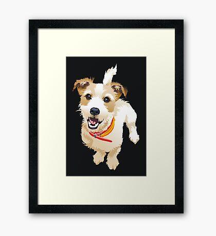 Bobby Framed Print