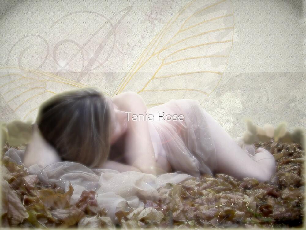 Re Awakening by Tania Rose