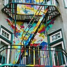 Haight Ashbury Fire Escape by Barbara  Brown