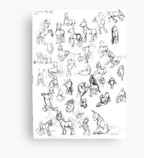 Pony Study Canvas Print