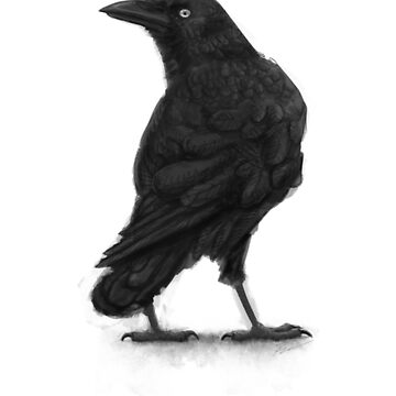 Raven by LonelyWinters