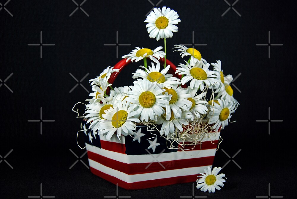 Stars And Stripes by Maria Dryfhout