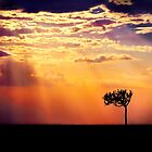 Sunset Over Masai Mara IV [Print & iPad Case] by Didi Bingham