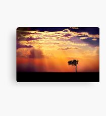 Sunset Over Masai Mara IV [Print & iPad Case] Canvas Print