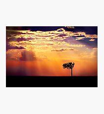 Sunset Over Masai Mara IV [Print & iPad Case] Photographic Print