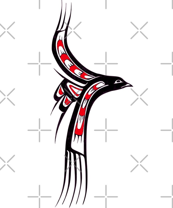 quotpacific northwest coast native american indian art gull