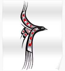 Pacific Northwest Coast Native American Indian Art Gull Bird Poster