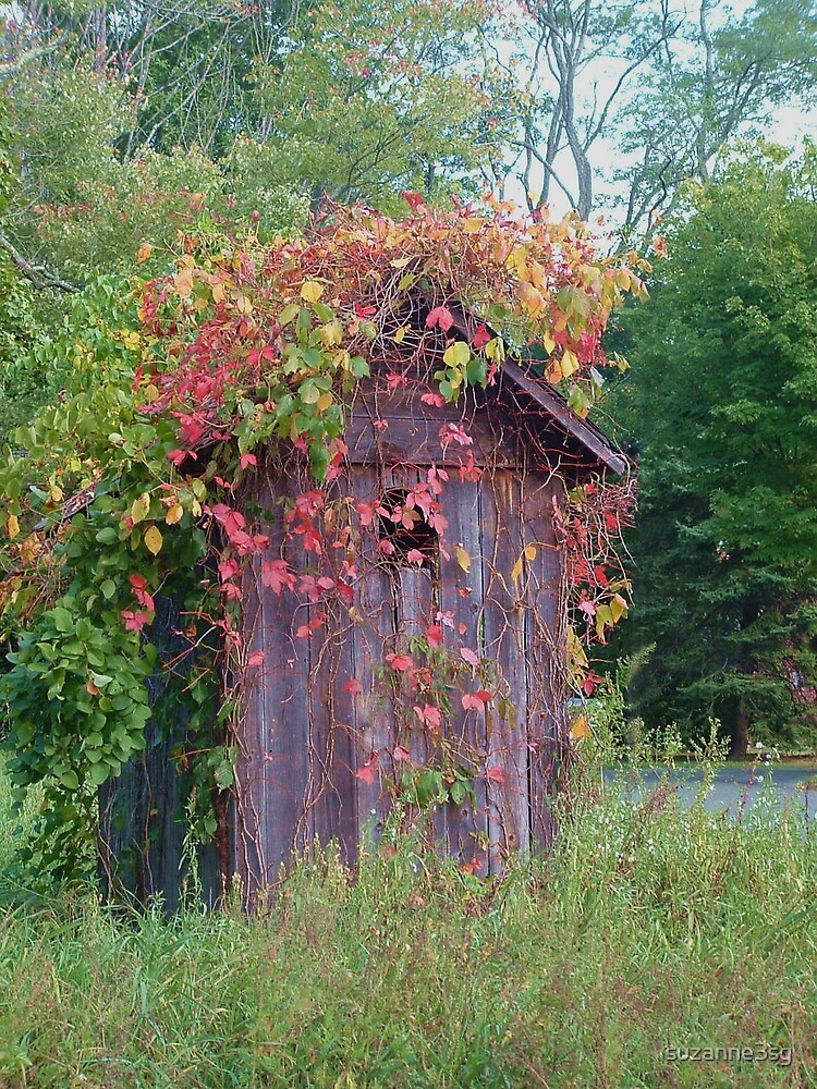 autumn shack by suzanne3sg