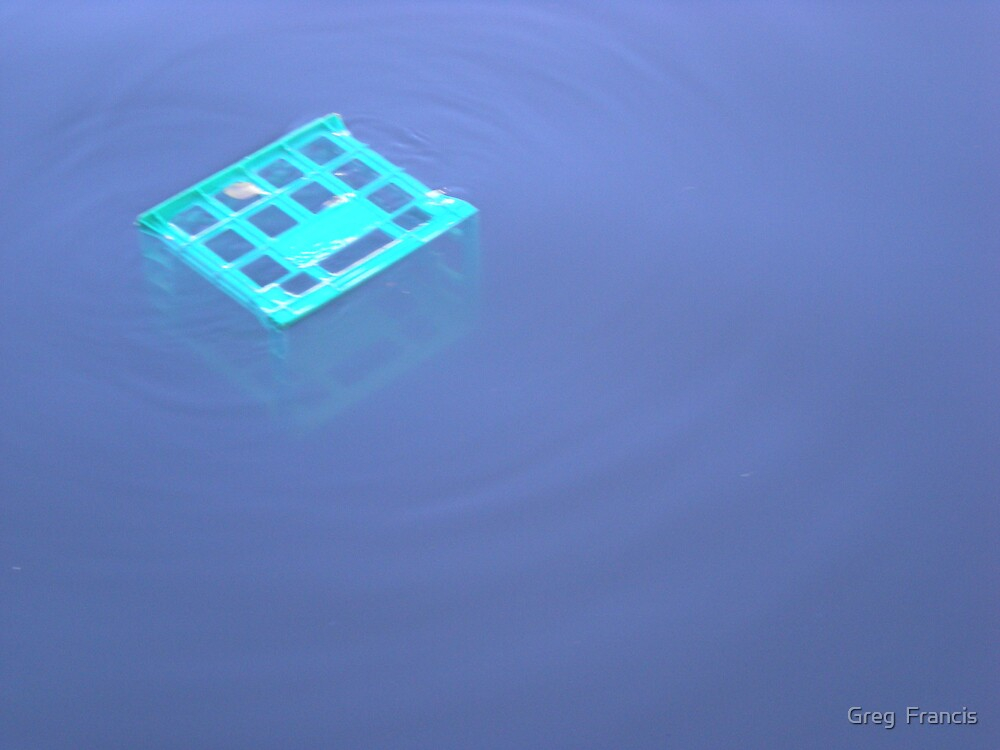 Milk crate in the Yarra by Greg  Francis