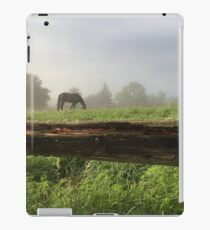 Fenceline Fog iPad Case/Skin