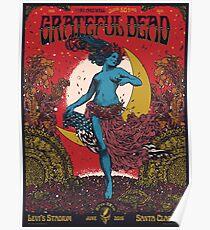 Grateful dead poster Poster