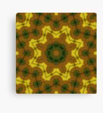 Sunspiral Canvas Print