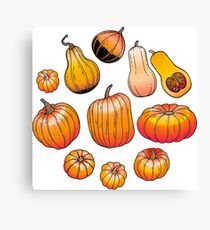 Graphic collection of pumpkins Canvas Print