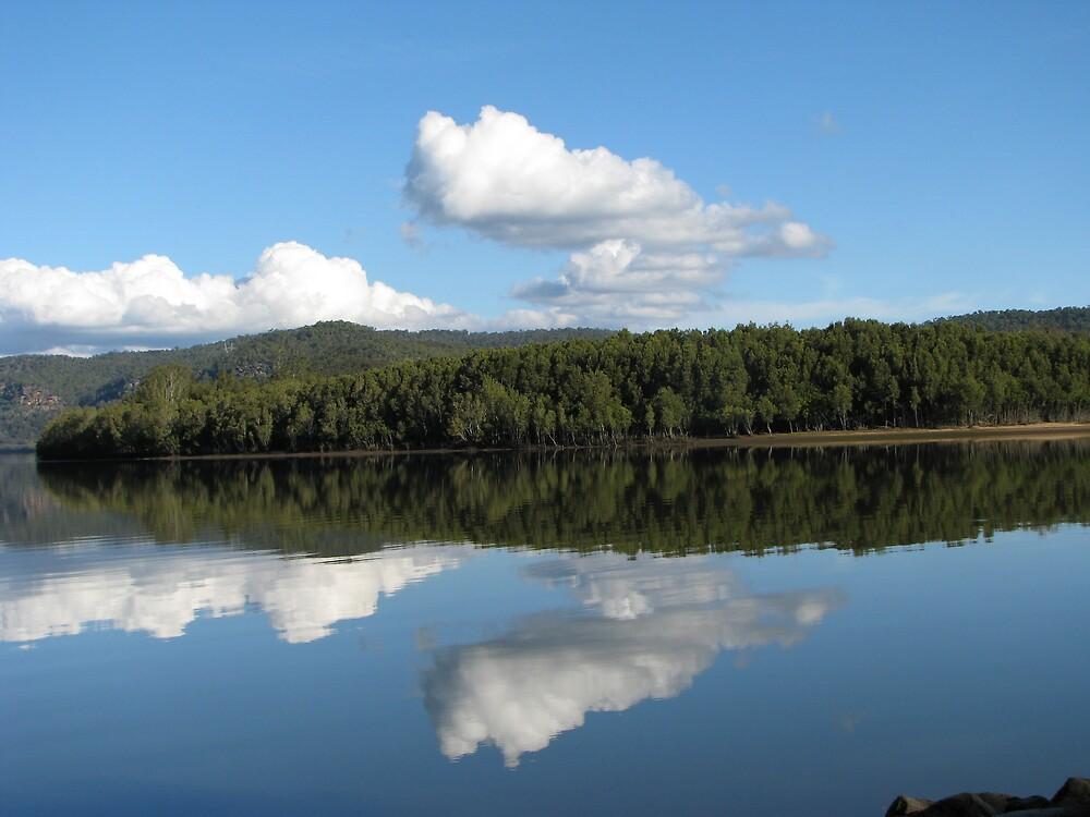 Mangrove mountain reflection by sandrajacktrips