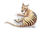 Tasmanian Tiger by Meaghan Roberts