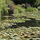 The Water Garden, Giverny, France by Elena Skvortsova