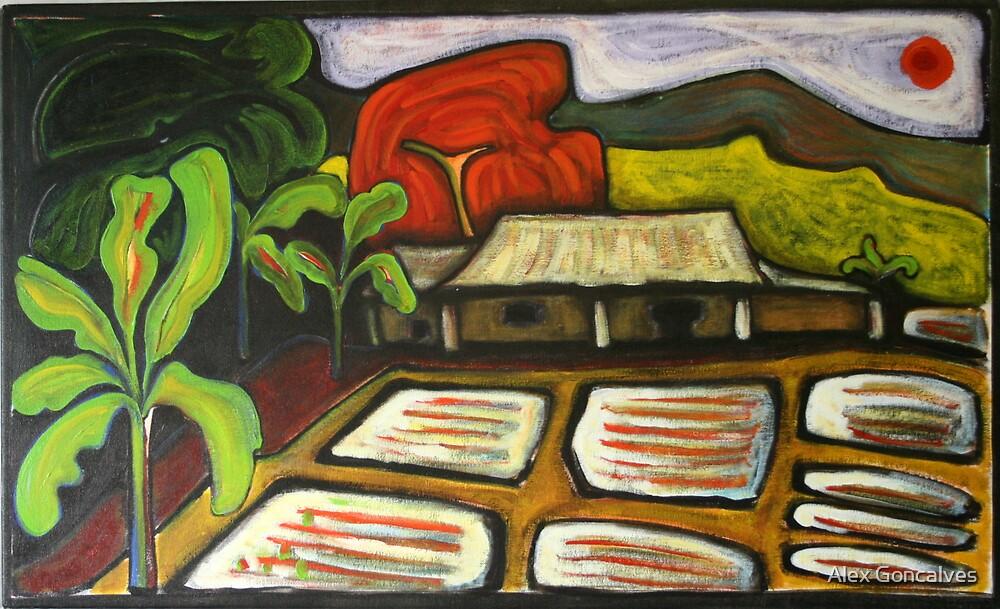 Farmhouse At Sal by Alex Goncalves