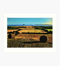 Autumnal View Of Garryvoe Art Print