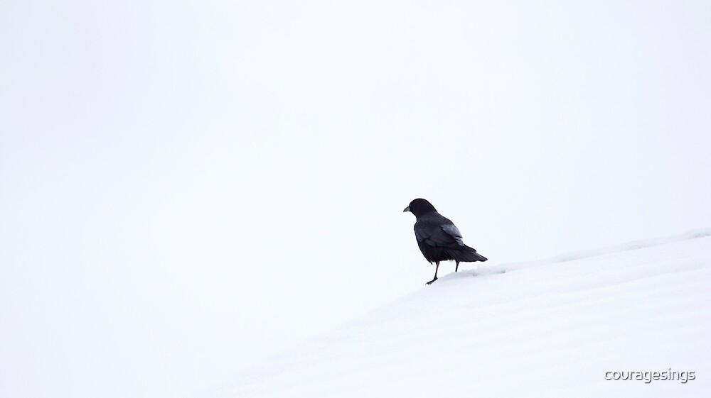 Crow in Snow by couragesings